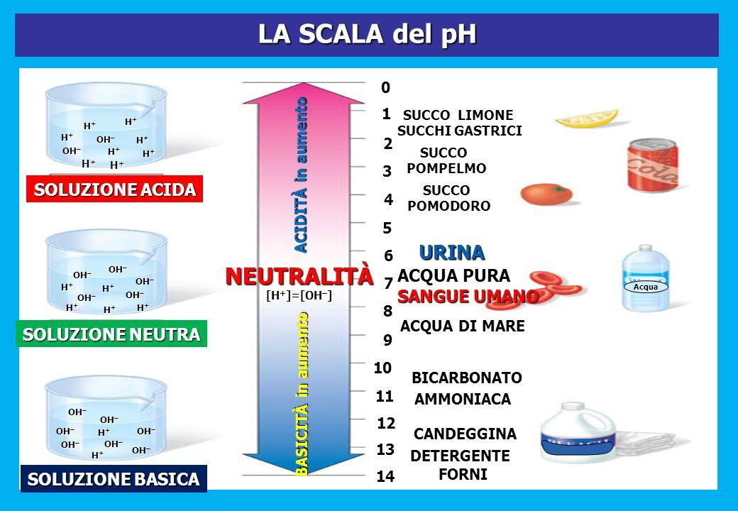 LA SCALA del pH NEUTRALITÀ URINA SOLUZIONE ACIDA ACQUA PURA