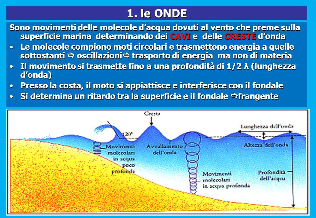 1. le ONDE Sono movimenti delle molecole d'acqua dovuti al vento che preme sulla superficie marina determinando dei CAVI e delle CRESTE d'onda.