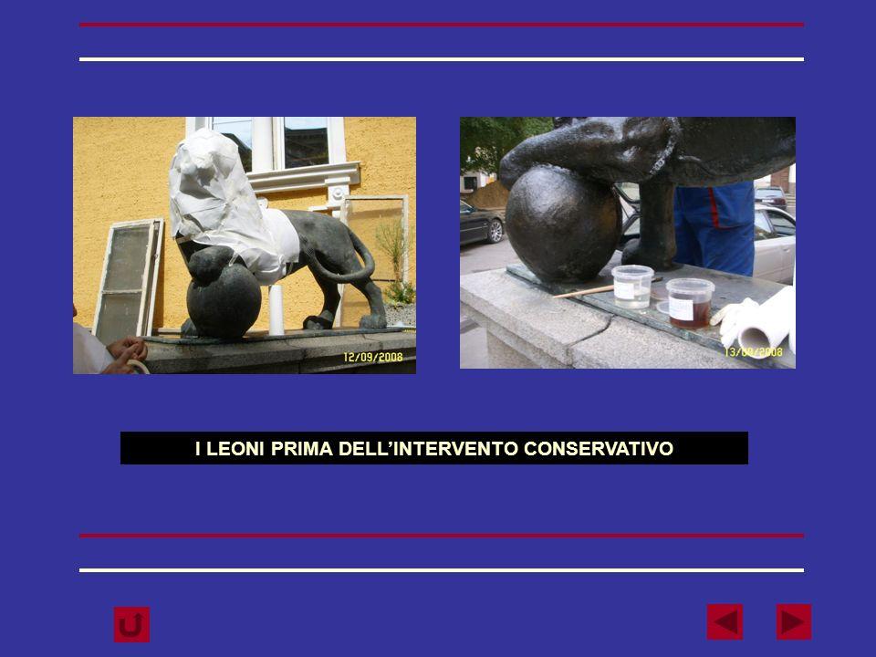 I LEONI PRIMA DELL'INTERVENTO CONSERVATIVO