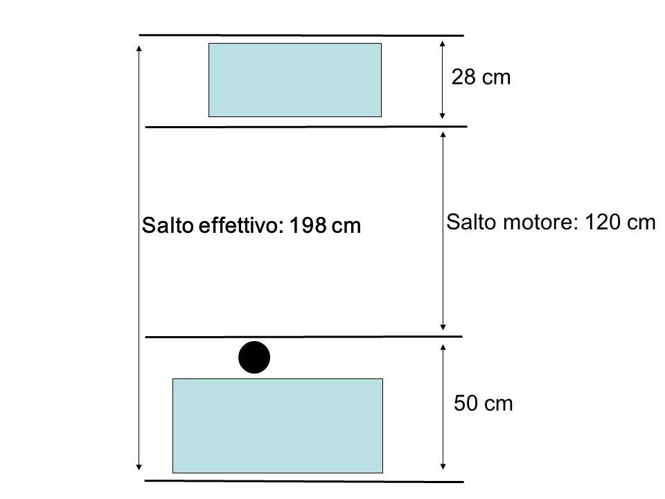28 cm Salto effettivo: 198 cm Salto motore: 120 cm 50 cm