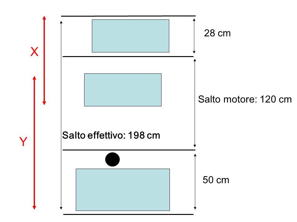 28 cm X Salto motore: 120 cm Salto effettivo: 198 cm Y 50 cm