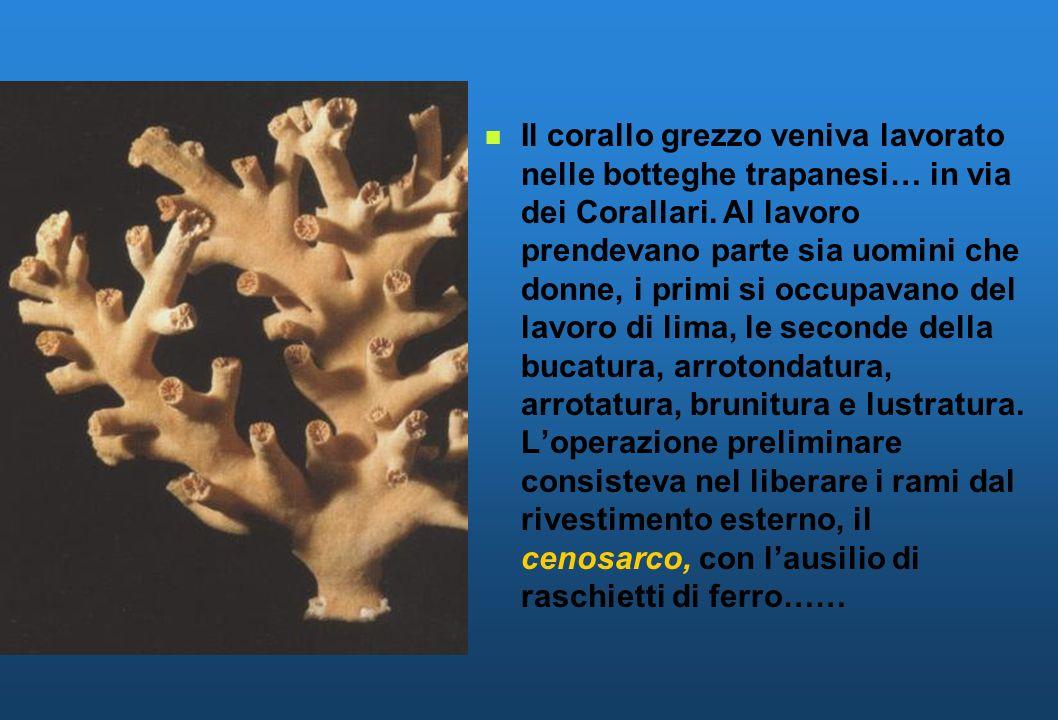 Il corallo grezzo veniva lavorato nelle botteghe trapanesi… in via dei Corallari.