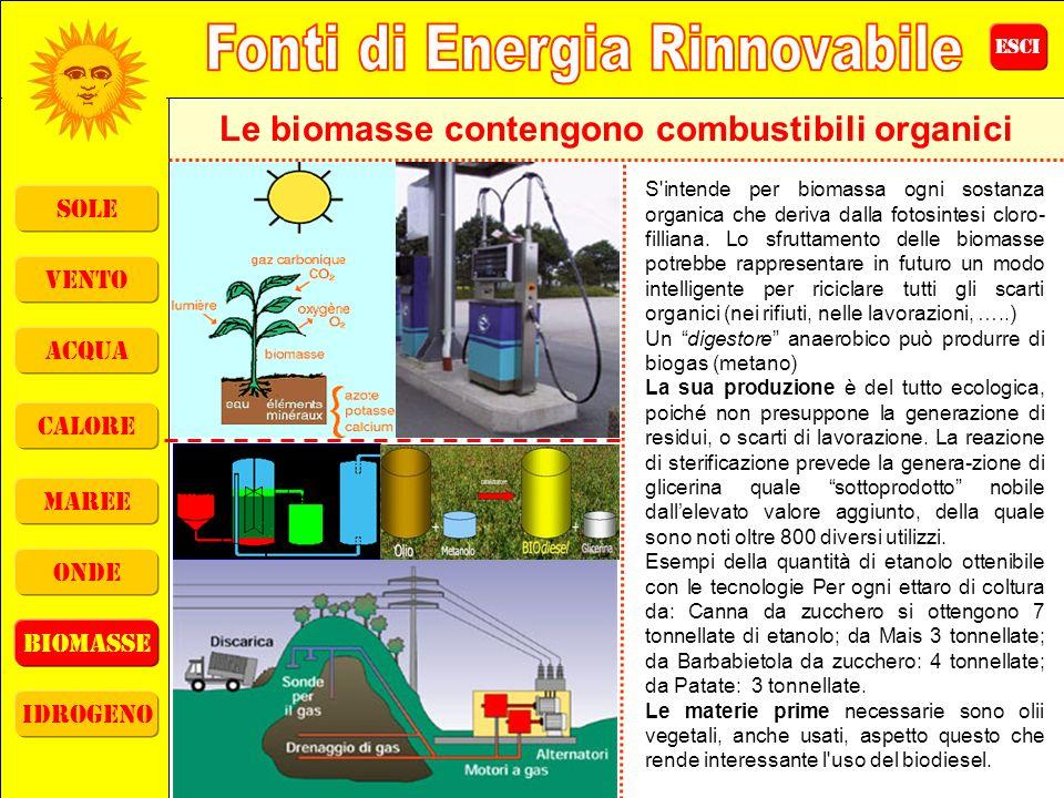 Le biomasse contengono combustibili organici