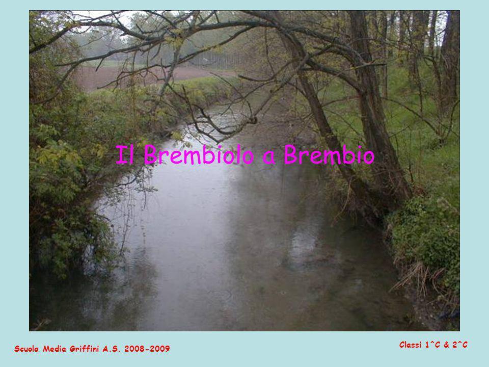 Il Brembiolo a Brembio Classi 1^C & 2^C