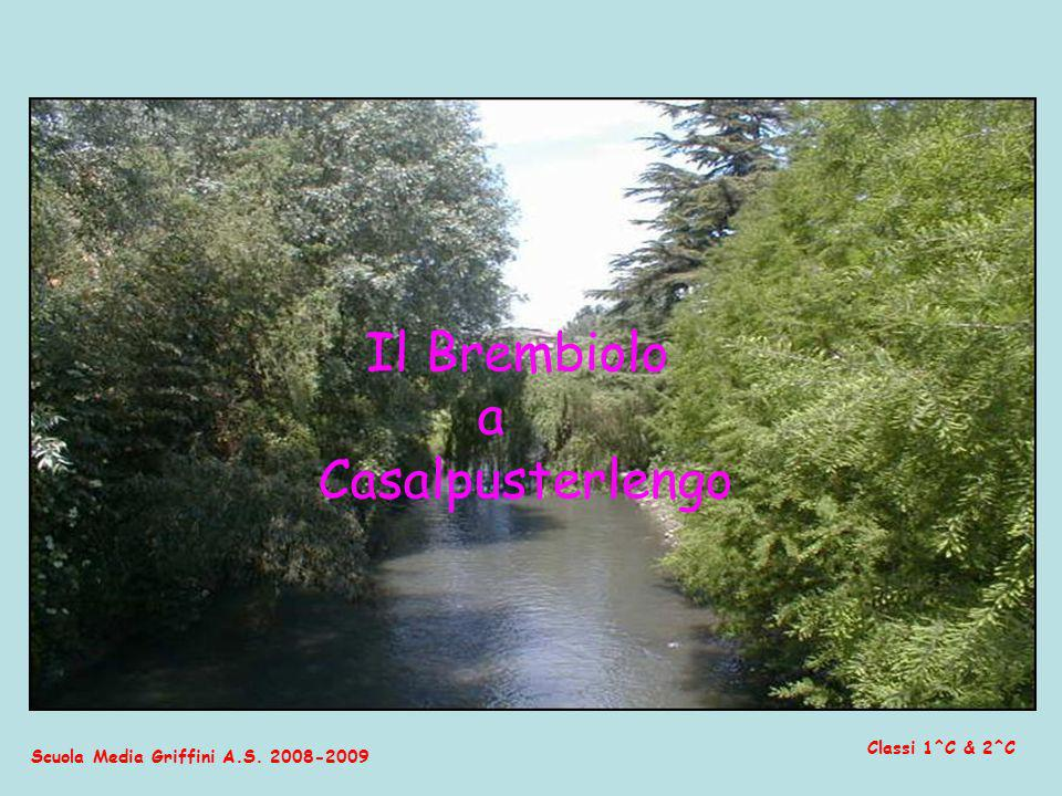 Il Brembiolo a Casalpusterlengo Classi 1^C & 2^C