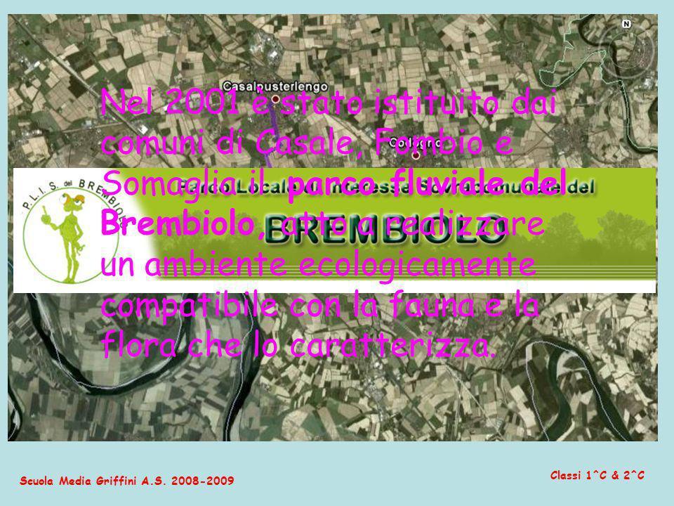 Nel 2001 è stato istituito dai comuni di Casale, Fombio e Somaglia il parco fluviale del Brembiolo, atto a realizzare un ambiente ecologicamente compatibile con la fauna e la flora che lo caratterizza.