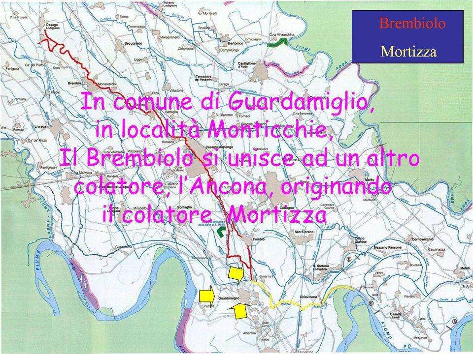In comune di Guardamiglio, in località Monticchie,