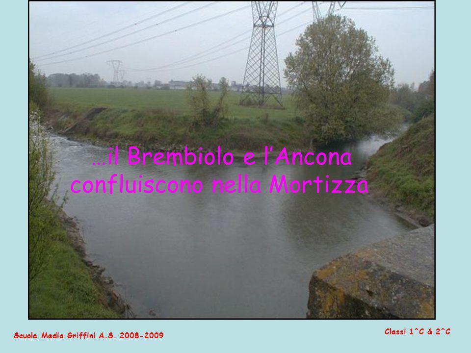 …il Brembiolo e l'Ancona confluiscono nella Mortizza