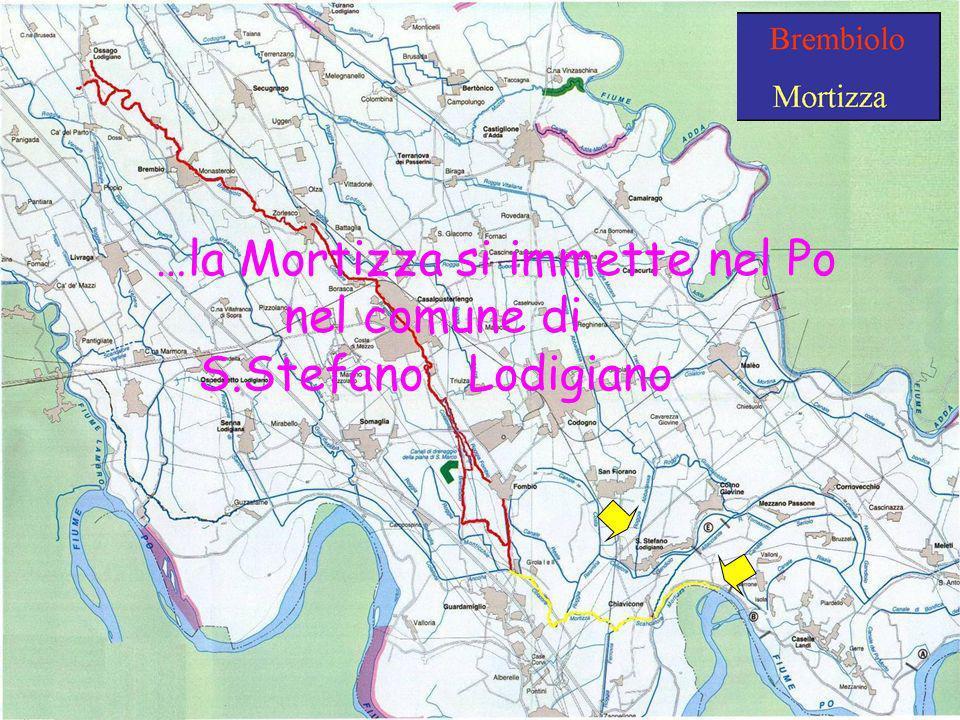 …la Mortizza si immette nel Po nel comune di S.Stefano Lodigiano