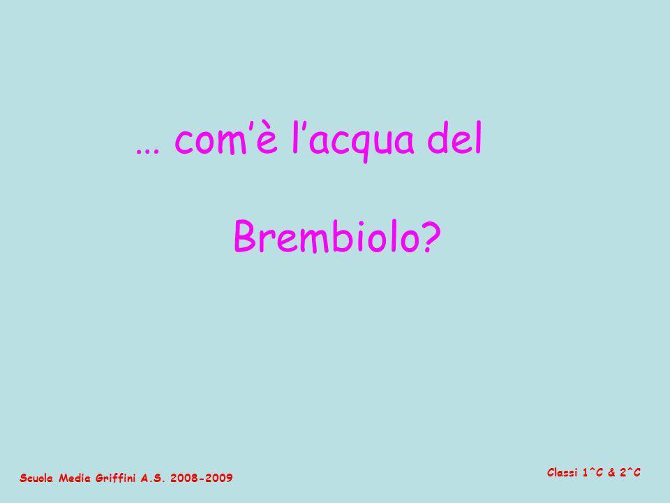 … com'è l'acqua del Brembiolo Classi 1^C & 2^C