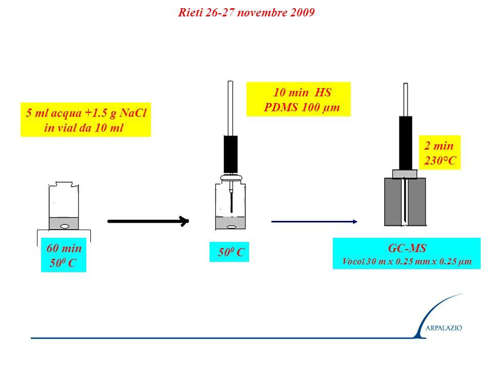 Rieti 26-27 novembre 2009 10 min HS PDMS 100 µm 5 ml acqua +1.5 g NaCl