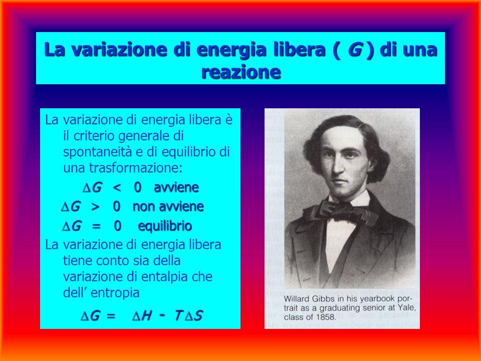 La variazione di energia libera ( G ) di una reazione