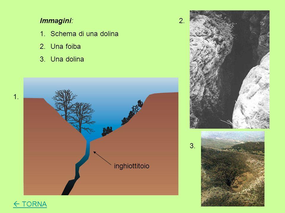 Immagini: Schema di una dolina Una foiba Una dolina 2. 1. 3. inghiottitoio  TORNA
