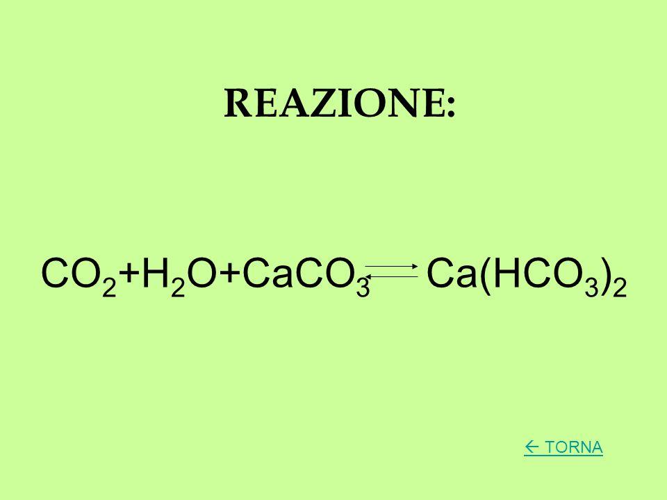 REAZIONE: CO2+H2O+CaCO3 Ca(HCO3)2  TORNA
