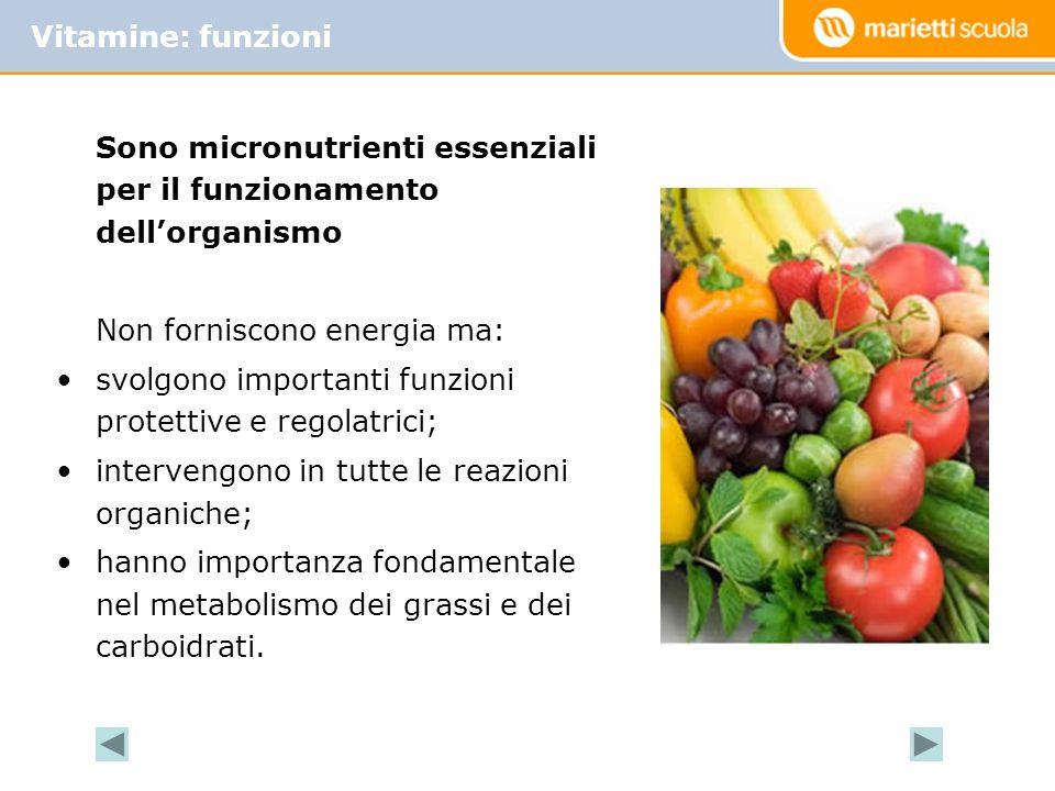 Vitamine: funzioni Sono micronutrienti essenziali per il funzionamento dell'organismo. Non forniscono energia ma: