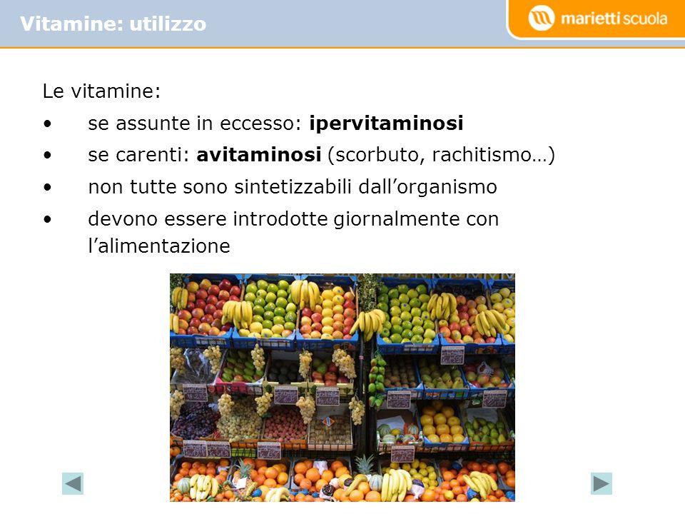 Vitamine: utilizzo Le vitamine: se assunte in eccesso: ipervitaminosi. se carenti: avitaminosi (scorbuto, rachitismo…)