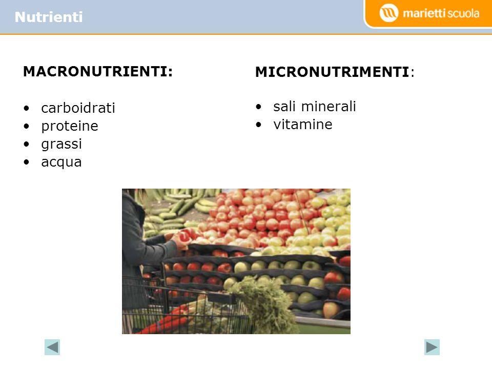 Nutrienti MACRONUTRIENTI: carboidrati proteine grassi acqua MICRONUTRIMENTI: sali minerali vitamine