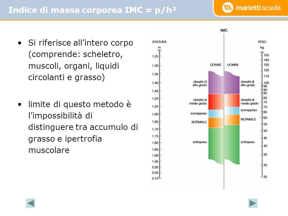 Indice di massa corporea IMC = p/h²