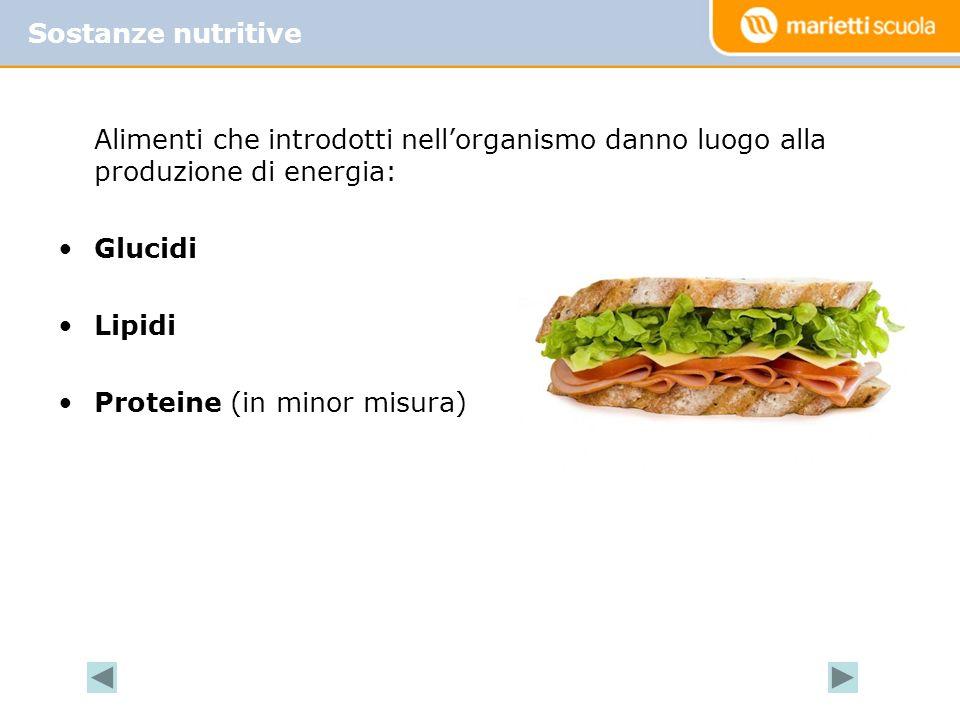 Sostanze nutritive Alimenti che introdotti nell'organismo danno luogo alla produzione di energia: Glucidi.