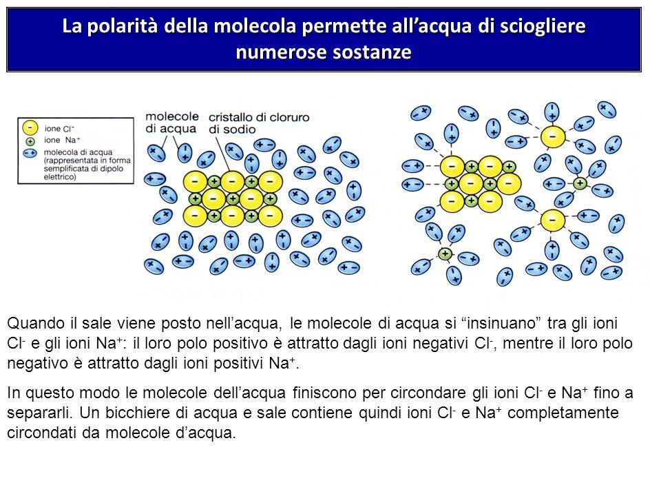 La polarità della molecola permette all'acqua di sciogliere numerose sostanze