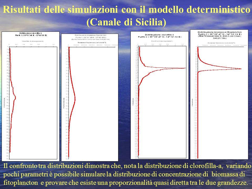 Risultati delle simulazioni con il modello deterministico