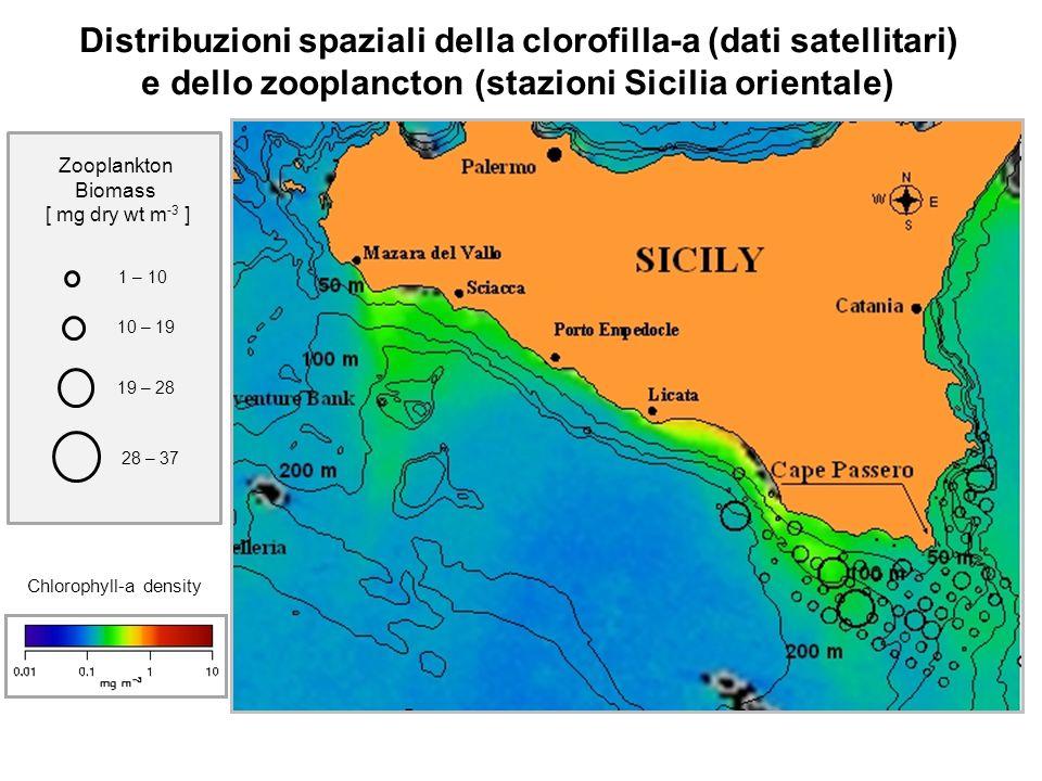 Distribuzioni spaziali della clorofilla-a (dati satellitari) e dello zooplancton (stazioni Sicilia orientale)