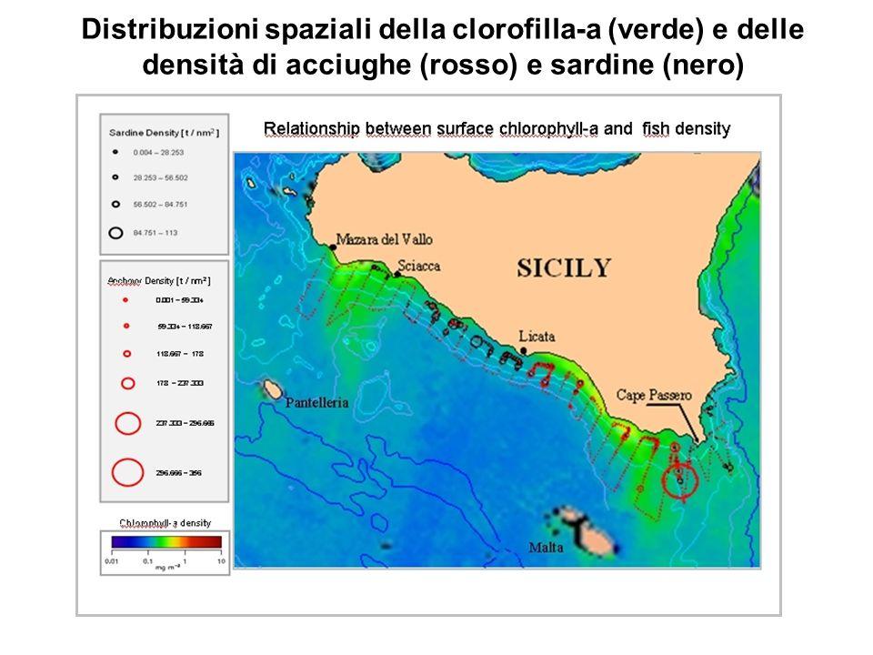 Distribuzioni spaziali della clorofilla-a (verde) e delle densità di acciughe (rosso) e sardine (nero)