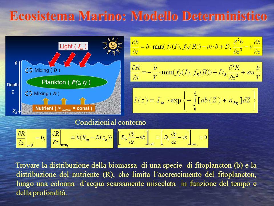 Ecosistema Marino: Modello Deterministico