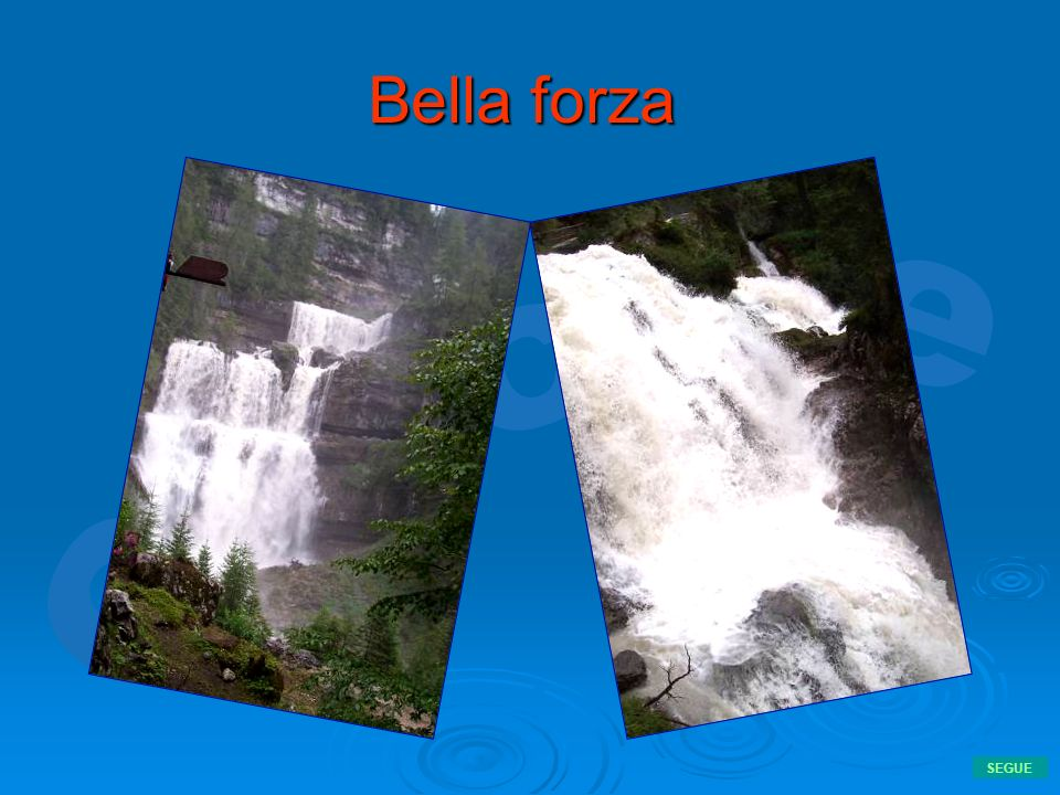 Bella forza SEGUE