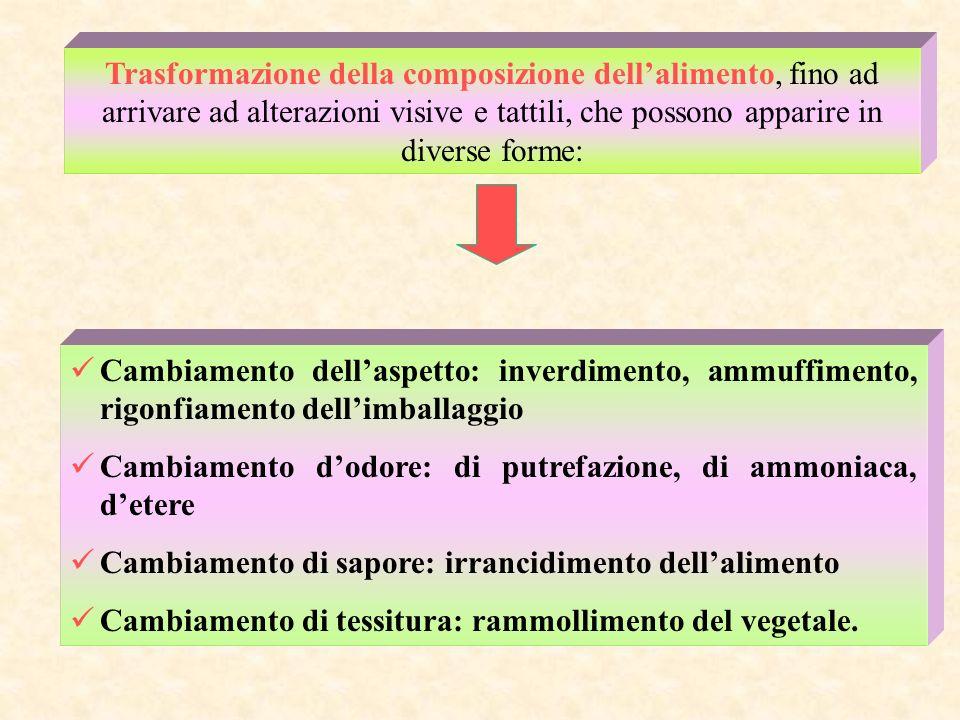 Trasformazione della composizione dell'alimento, fino ad arrivare ad alterazioni visive e tattili, che possono apparire in diverse forme: