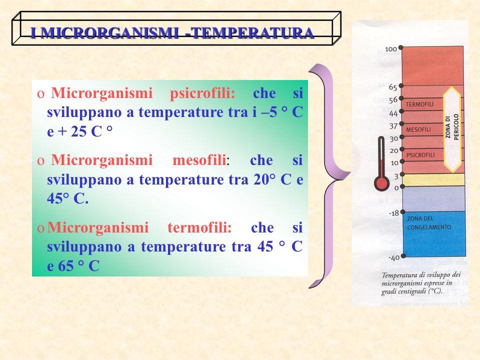 I MICRORGANISMI -TEMPERATURA