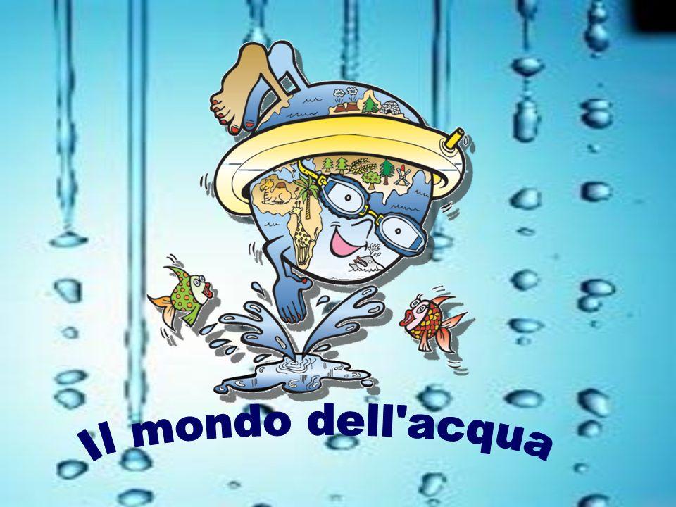 Il mondo dell acqua