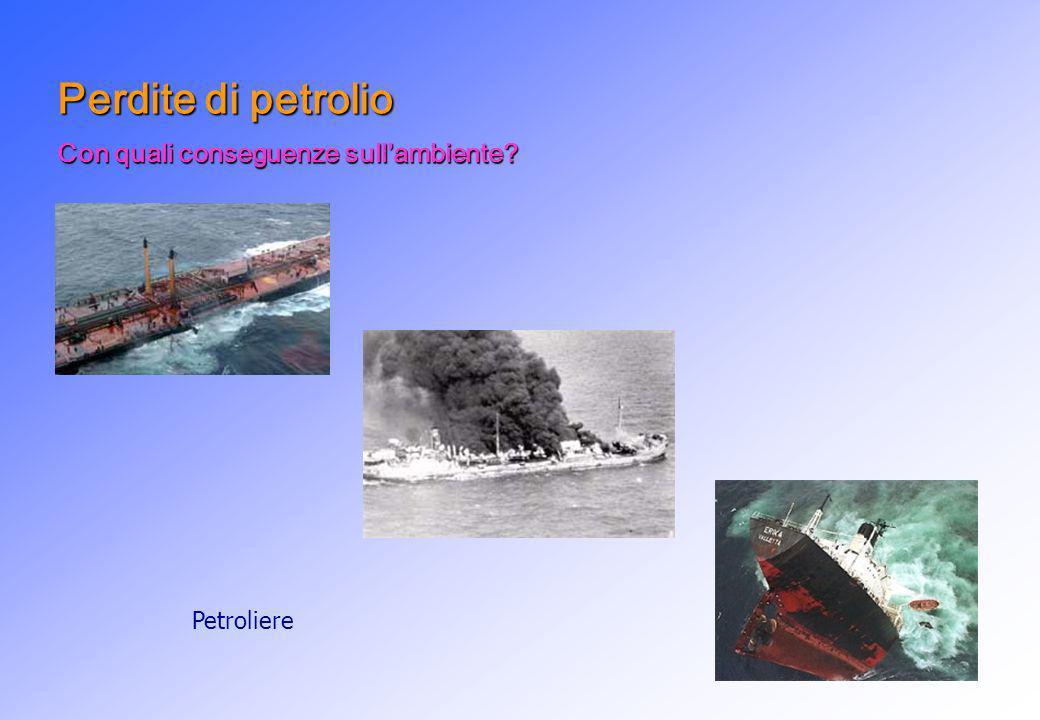 Perdite di petrolio Con quali conseguenze sull'ambiente Petroliere
