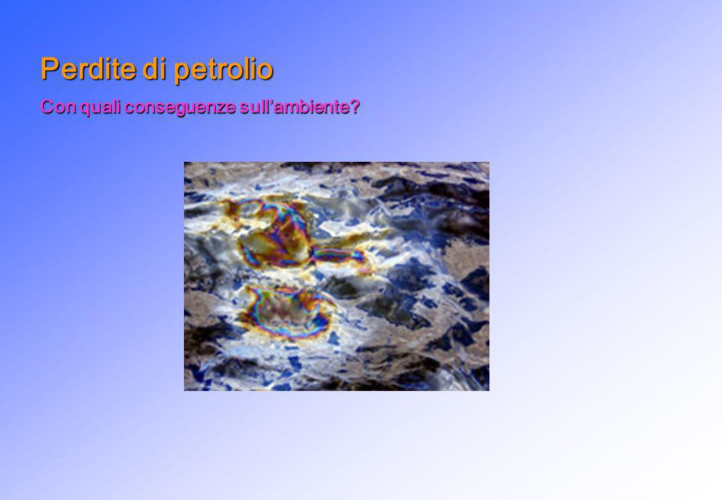 Perdite di petrolio Con quali conseguenze sull'ambiente