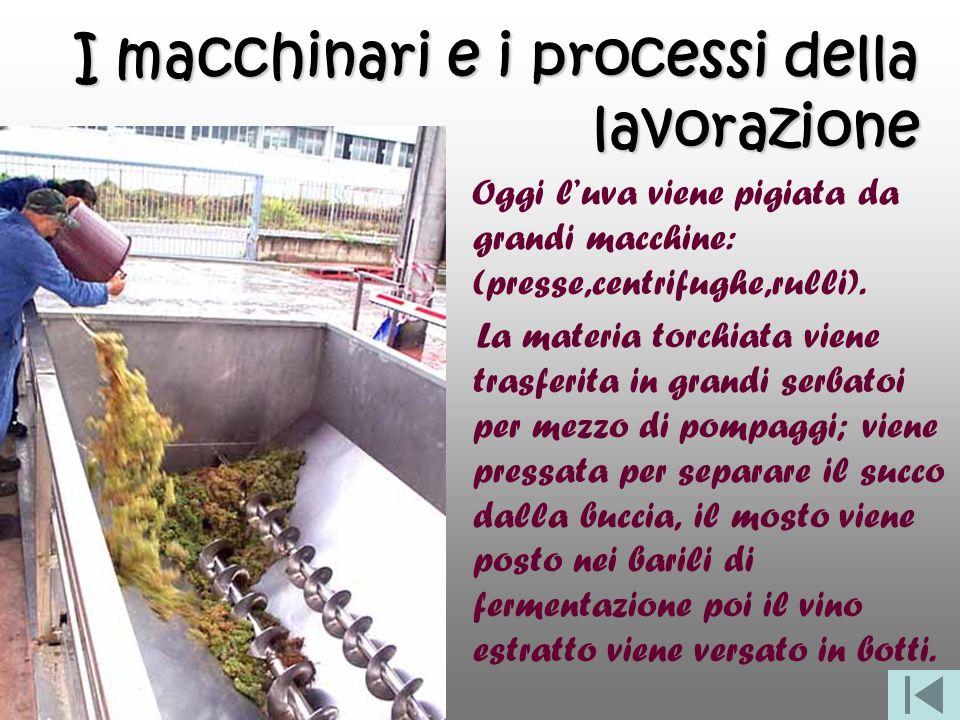 I macchinari e i processi della lavorazione