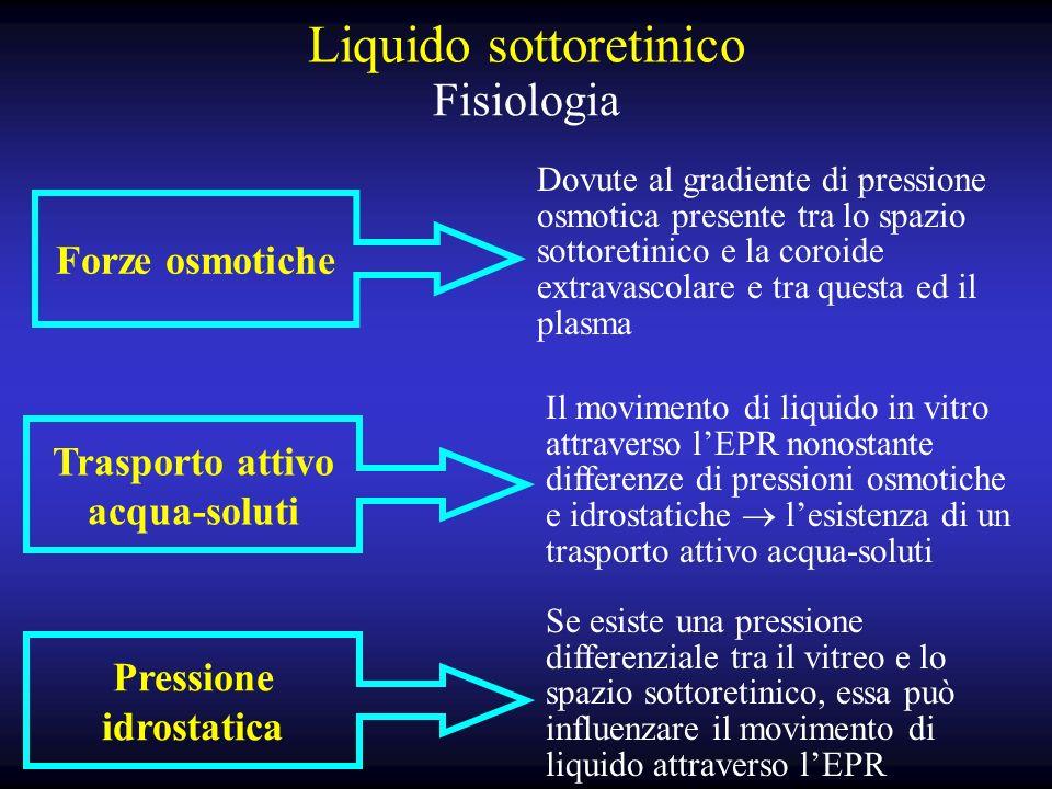 Liquido sottoretinico