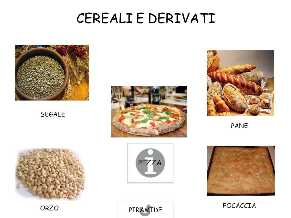 CEREALI E DERIVATI SEGALE PANE PIZZA PIRAMIDE FOCACCIA ORZO