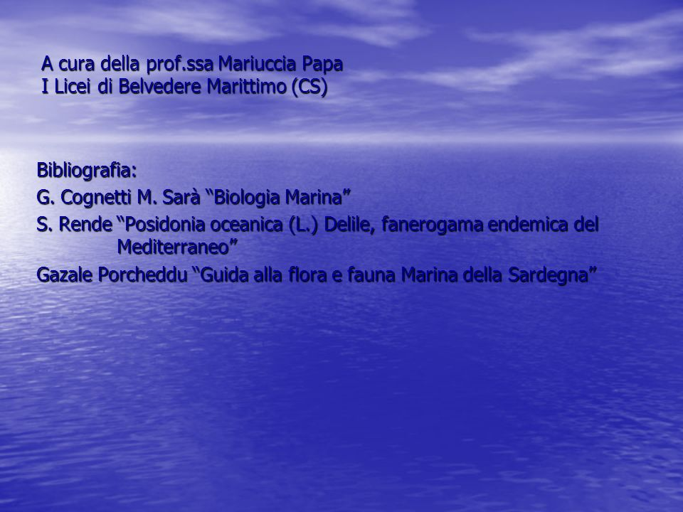 A cura della prof.ssa Mariuccia Papa I Licei di Belvedere Marittimo (CS)
