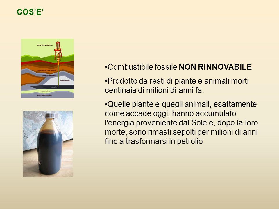 COS'E' Combustibile fossile NON RINNOVABILE. Prodotto da resti di piante e animali morti centinaia di milioni di anni fa.
