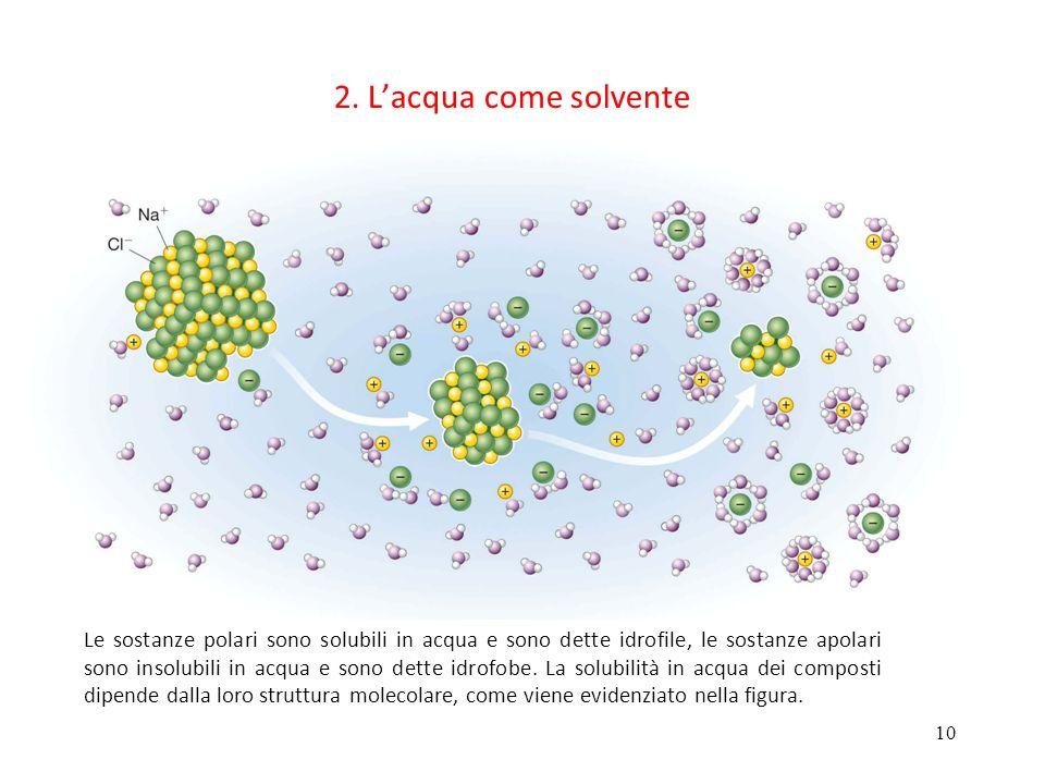 2. L'acqua come solvente
