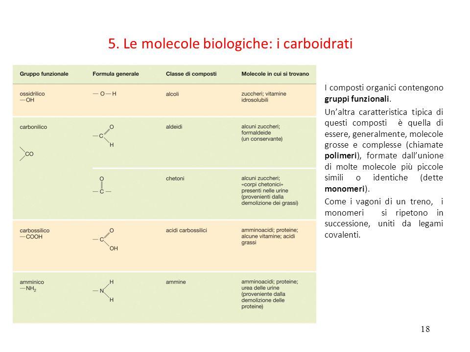 5. Le molecole biologiche: i carboidrati