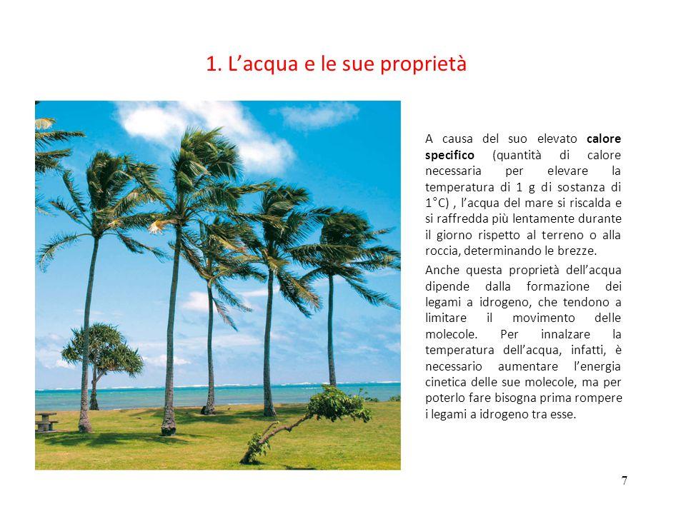 1. L'acqua e le sue proprietà