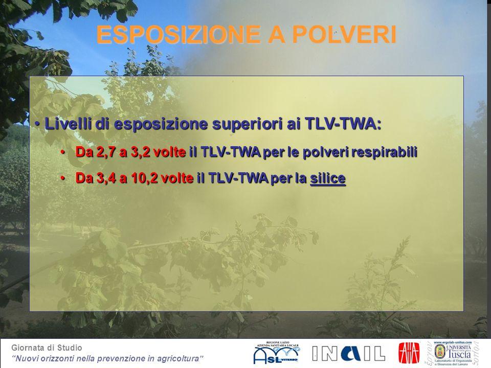 ESPOSIZIONE A POLVERI Livelli di esposizione superiori ai TLV-TWA: