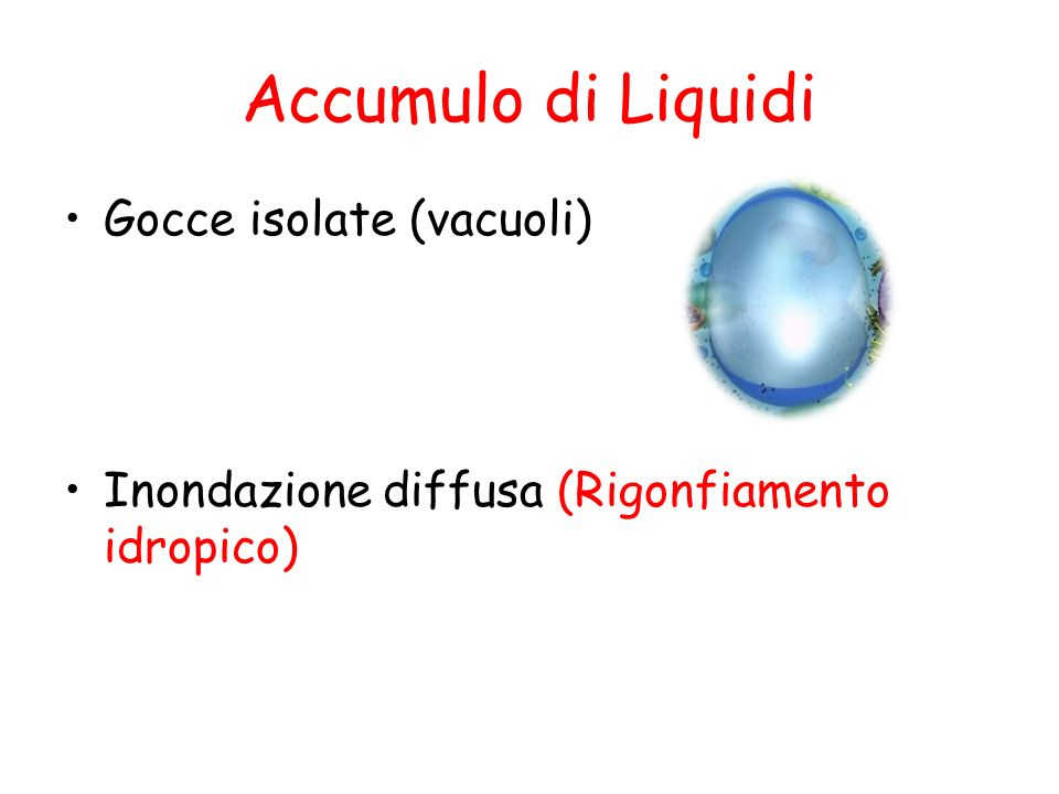 Accumulo di Liquidi Gocce isolate (vacuoli)
