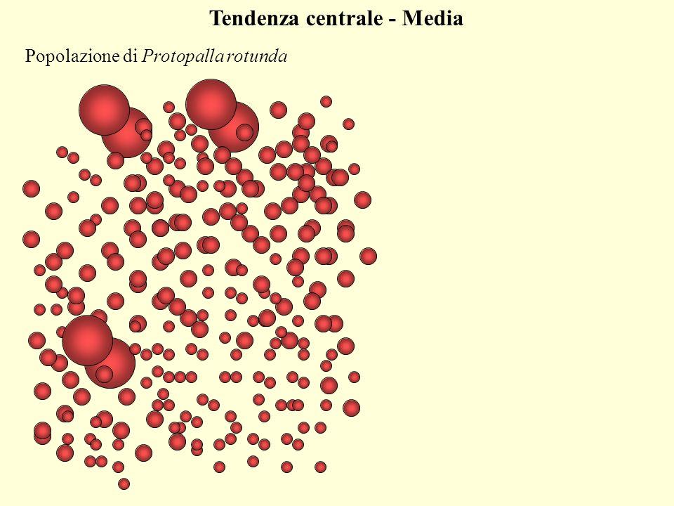 Tendenza centrale - Media