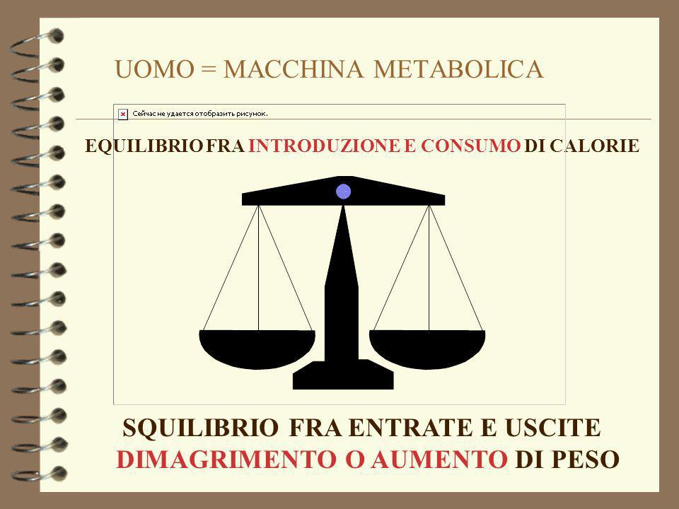 UOMO = MACCHINA METABOLICA