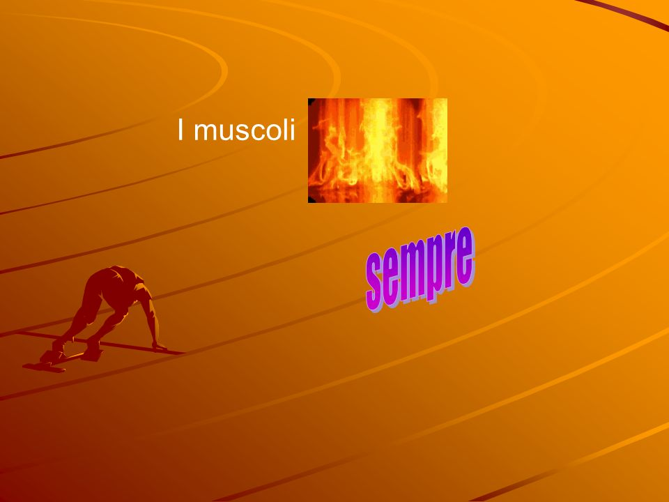 I muscoli sempre