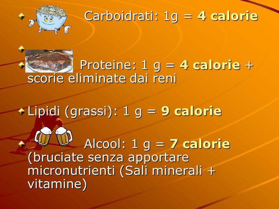 Carboidrati: 1g = 4 calorie