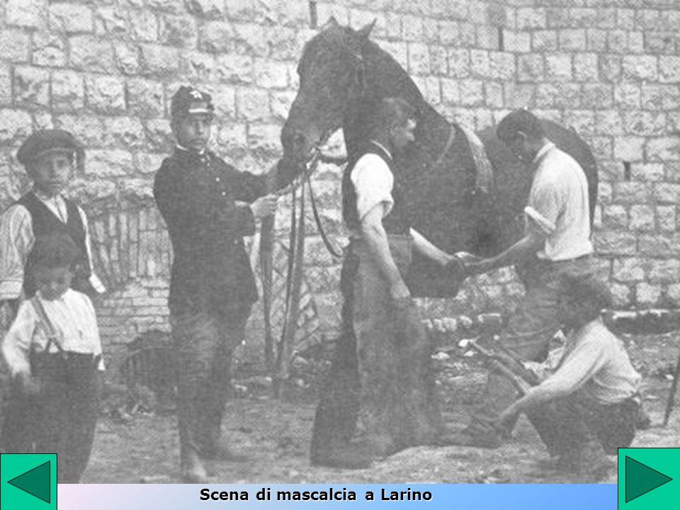 Scena di mascalcia a Larino