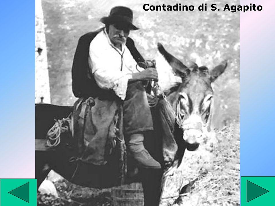 Contadino di S. Agapito